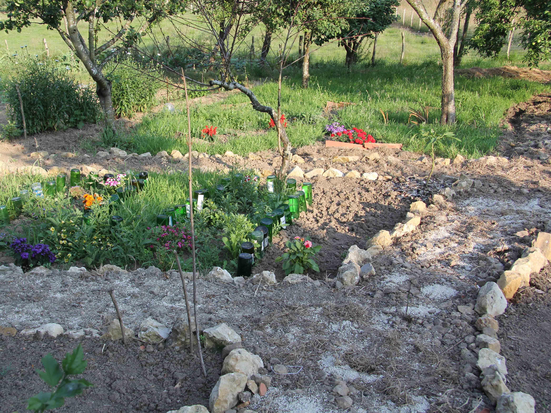 Comienzos del jardin jard n de - Los jardines de lola ...