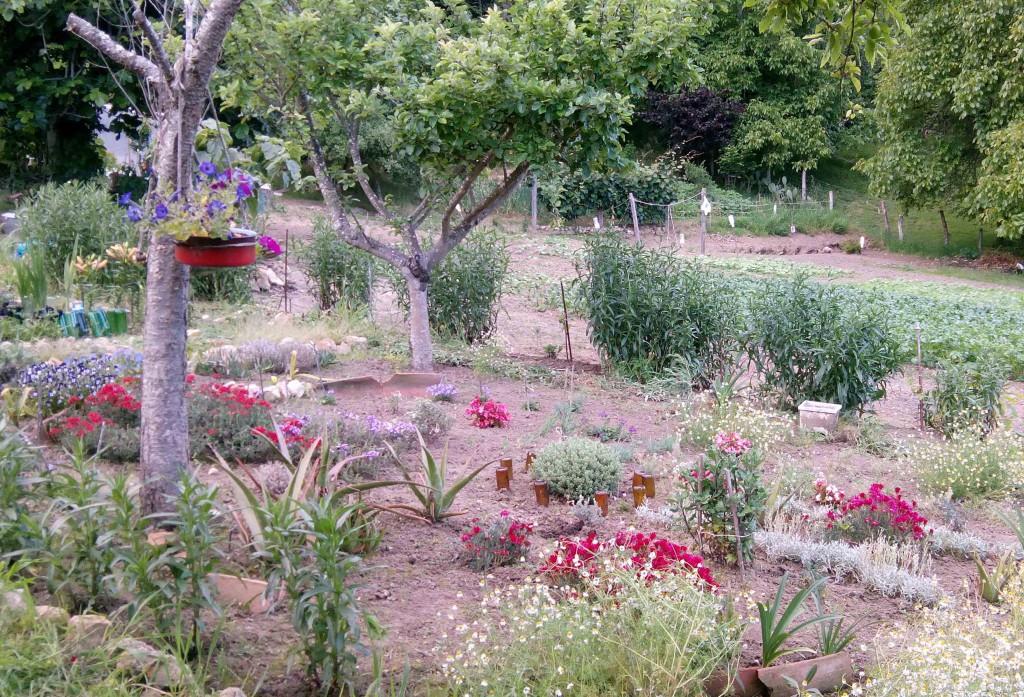 Aspecto jardin ya con flores