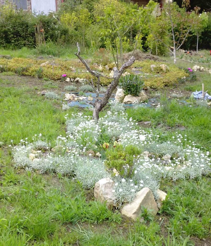 Dos bonitas formas que tiene el jardín