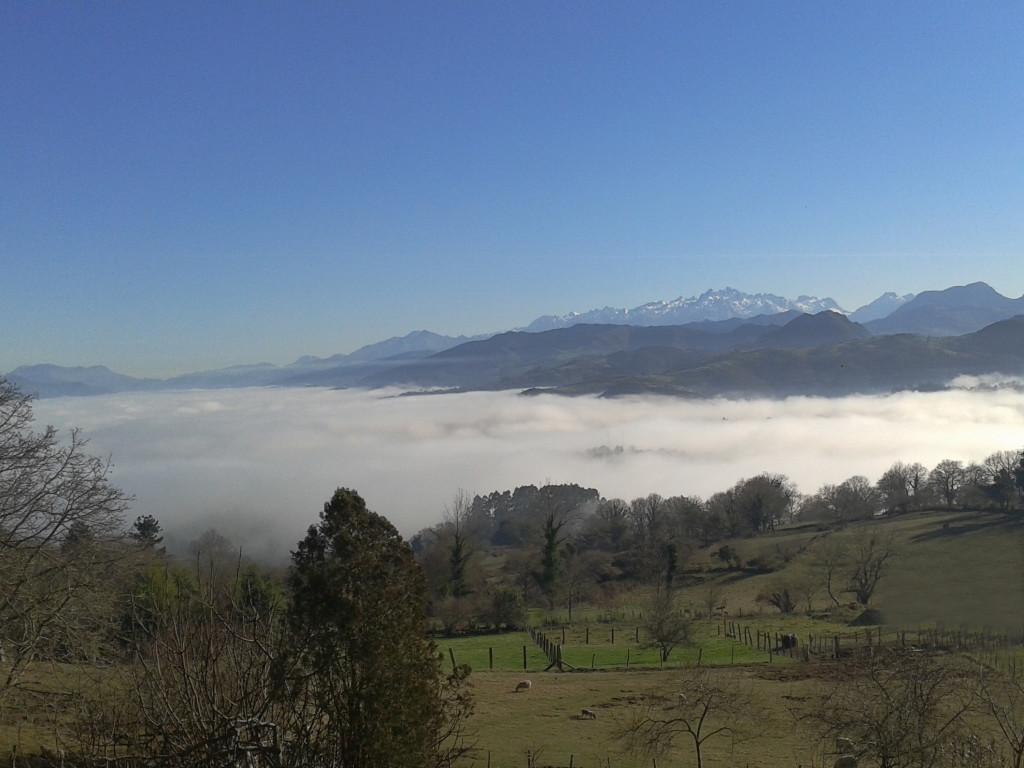 Una nube de algodon