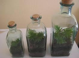 Crear Jardines En Botellas De Vidrio_02