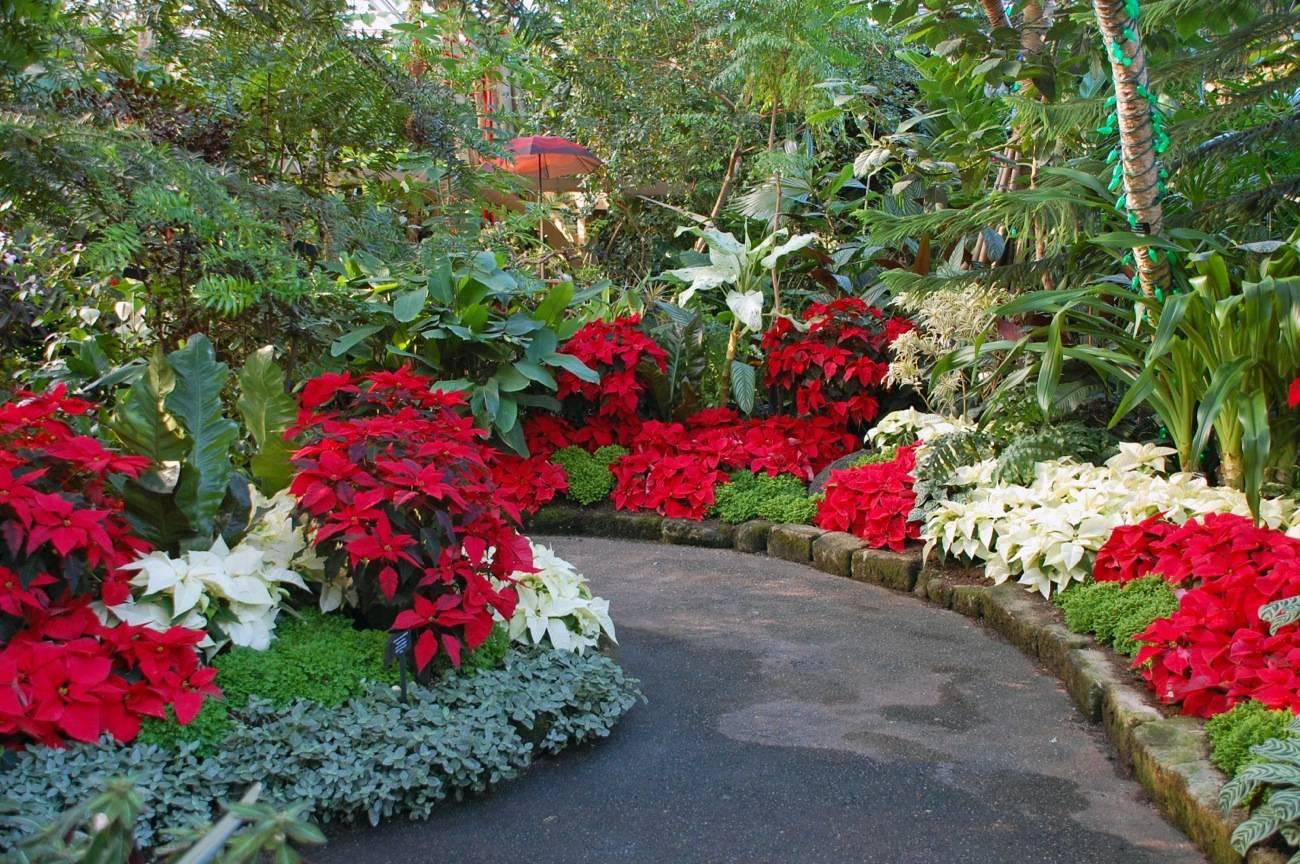 Plantas de record jard n de for Adornos para parques y jardines