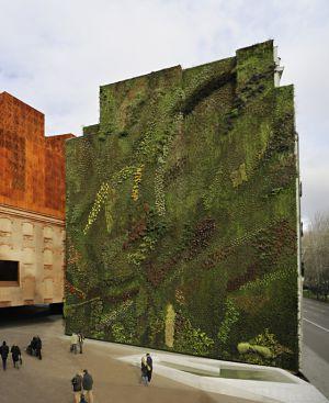 Jardines verticales sus beneficios eljardindemaruylola for Jardin vertical madrid