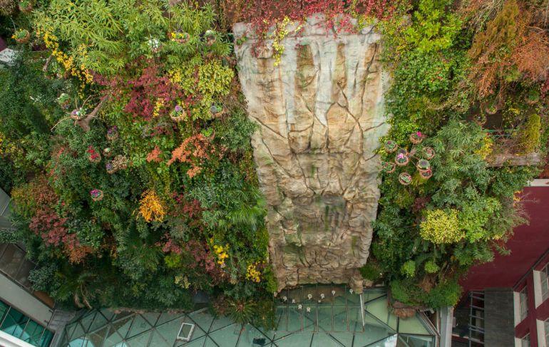 Jardines verticales sus beneficios eljardindemaruylola for Jardines verticales beneficios