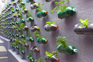 Tiestos reciclados - Botellas de plastico