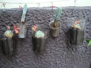 Tiestos reciclados - Vasos de plastico