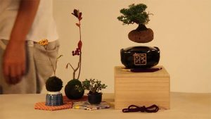 air-bonsai_02