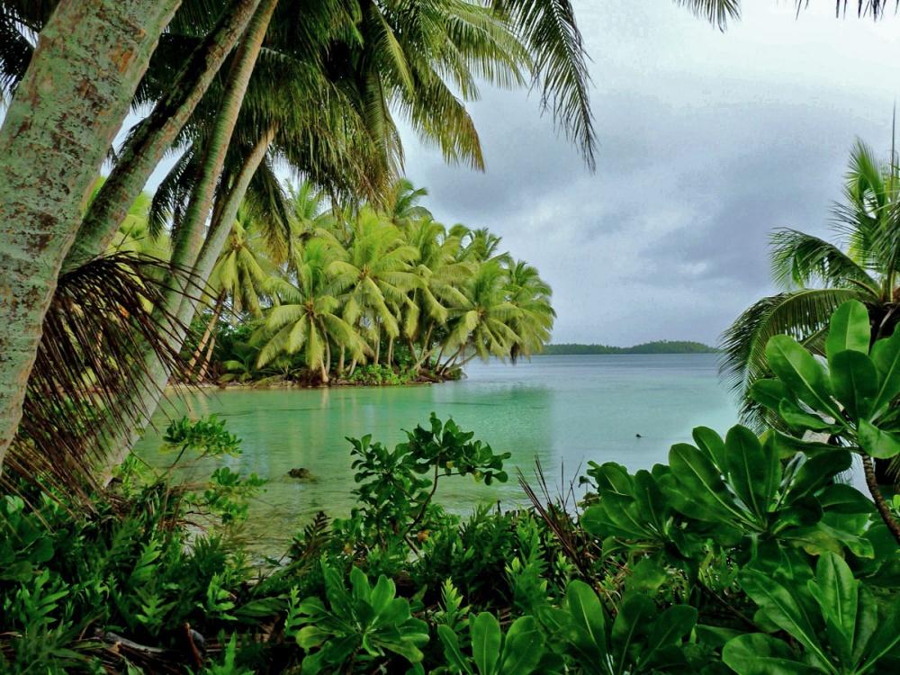 atolon-palmyra