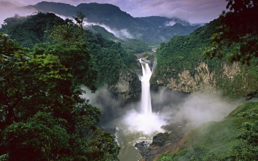 bosque-lluvioso-amazonico