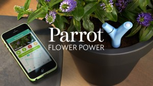 Flower Power, el sensor de plantas_01