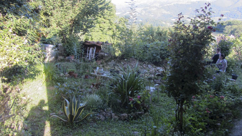 Nuestro jard n en agosto jard n - El jardin de lola ...