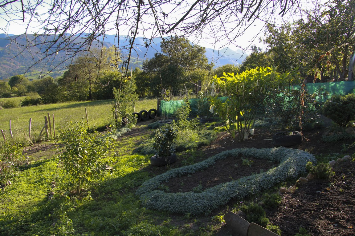 jardin-en-otono_02