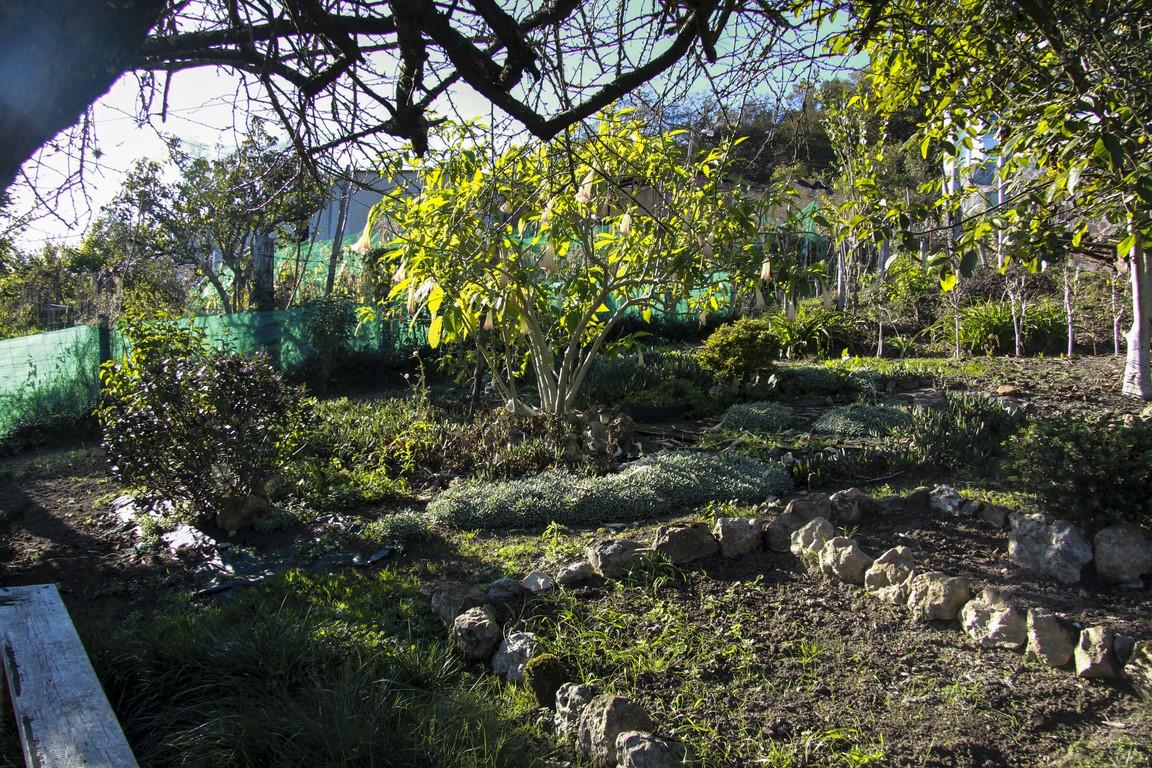 jardin-en-otono_03