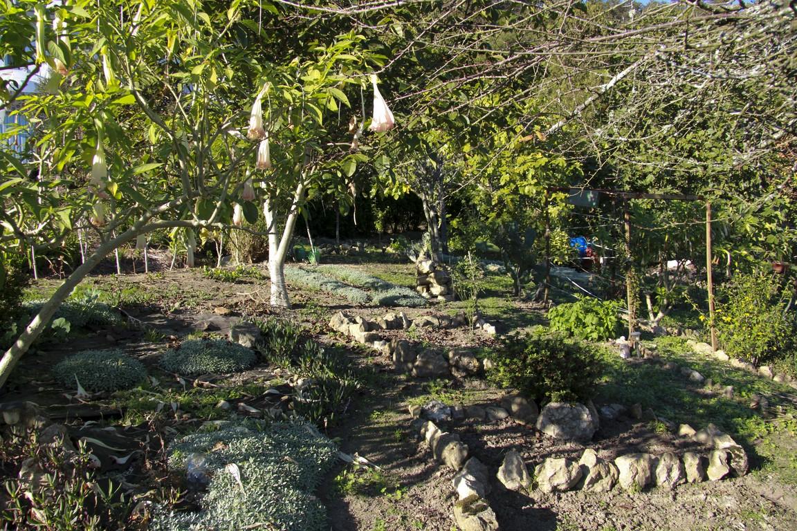 jardin-en-otono_04