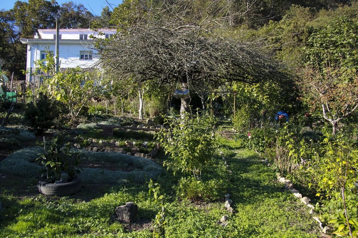 jardin-en-otono_06