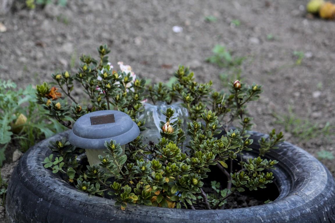 jardin-en-otono_07