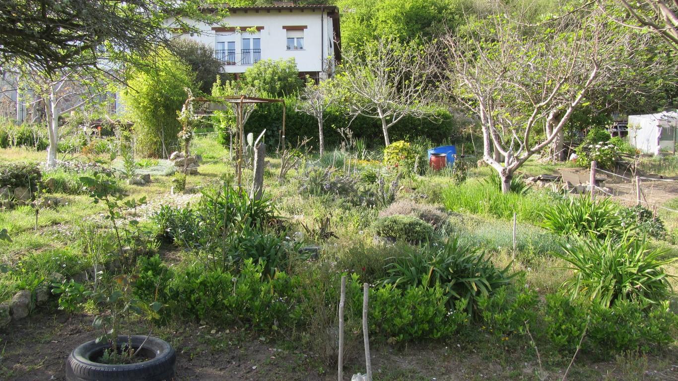 Nuestro jard n en abril jard n - El jardin de lola ...