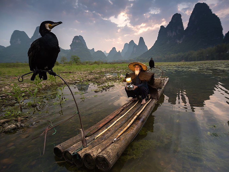 Alimentadores de Aves, Xingping, China/Abderazak Tissoukai