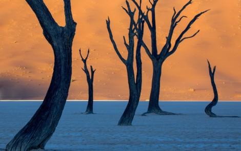 Paisajes terapeuticos - Namibias-Dead-Vlei