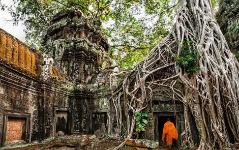 Paisajes terapeuticos - Ta-Prohm-en-Cambodia-1