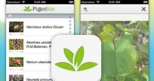 Plantnet_02